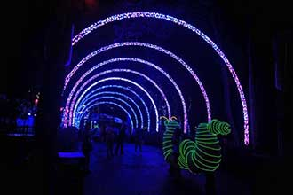 Many Amusement Parks Are Adding Animated Lighting Shows To Their Rides Roller Coasters Etc Enhance The Experience DMX Controlled Fixtures Also