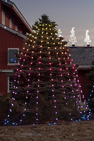 String Christmas Tree Lights Vertically : Animated Lighting Products Just Add Power String and Spiral Trees